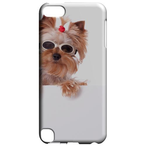 Geeks Designer Line (GDL) Slim Hard Case for Apple iPod Touch 5 - Yorkshire Terrier