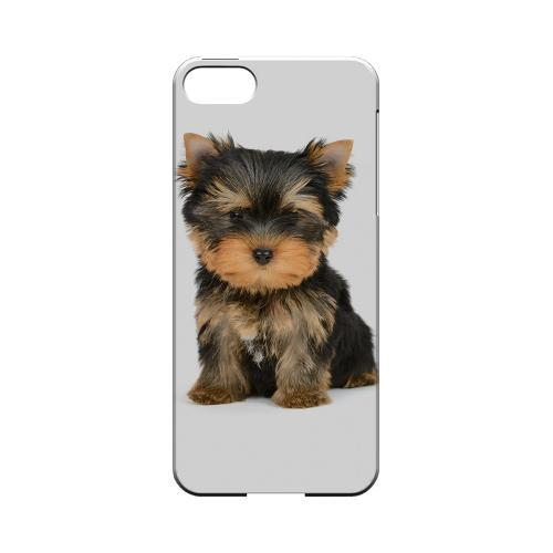 Yorkie Impact Resistant Geeks Designer Line Slim Hard Case for Apple iPhone 5/5S