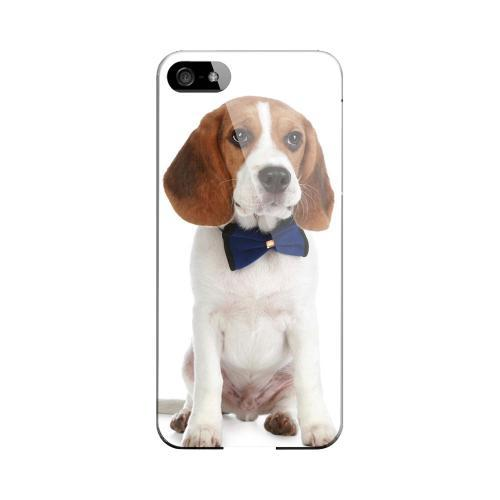 Beagle with Bow Tie Impact Resistant Geeks Designer Line Slim Hard Case for Apple iPhone 5/5S